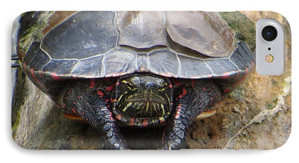 Sunday Morning In The Turtle Pond IPhone Case by Rita Mueller