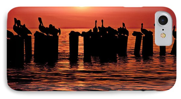 IPhone Case featuring the photograph Sundown With Pelicans by Julis Simo