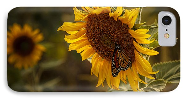Sunflower And Butterfly IPhone Case by Scott Bean