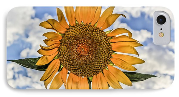 00008 Sunflower And Clouds IPhone Case by Photographic Art by Russel Ray Photos