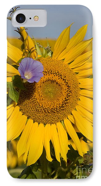 IPhone Case featuring the photograph Sunflower And Friend by Chris Scroggins