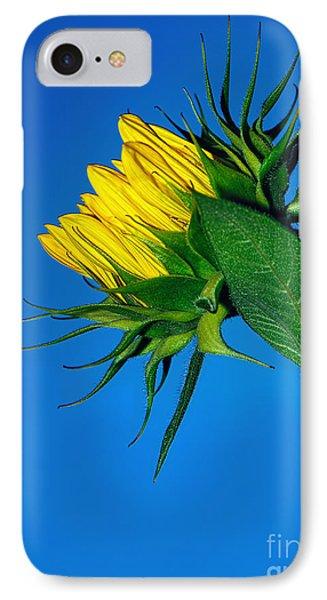 Sunflower Awakening IPhone Case