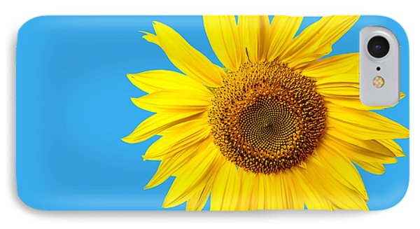 Sunflower Blue Sky IPhone Case by Edward Fielding