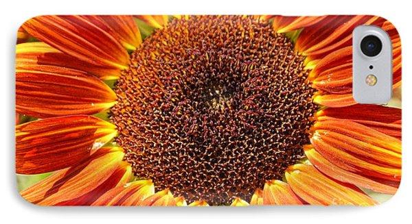 Sunflower Burst Phone Case by Kerri Mortenson