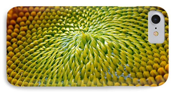 Sunflower  IPhone 7 Case by Christina Rollo