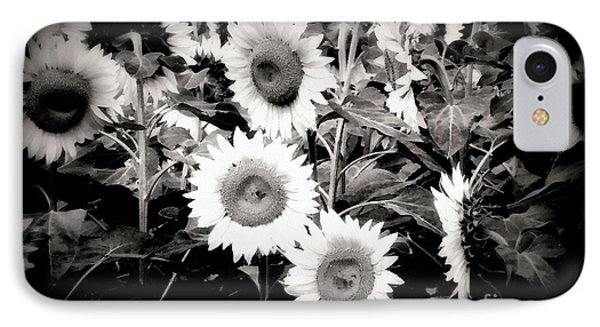 Sunflower Cinema In Black And White IPhone Case by Janine Riley