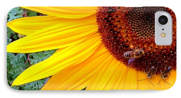 IPhone Case featuring the photograph Sunflower Close-up by Aurelio Zucco