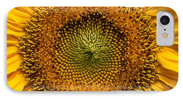 Sunflower Closeup IPhone Case