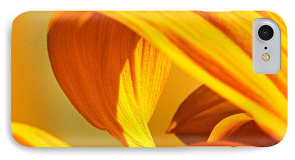 Sunflower Curve IPhone Case by Michael Cinnamond
