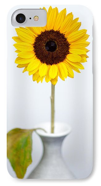 Sunflower IPhone Case by Dave Bowman