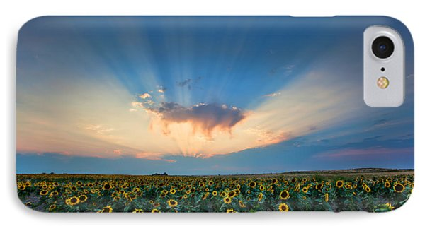Sunflower Field At Sunset IPhone Case by Jim Garrison