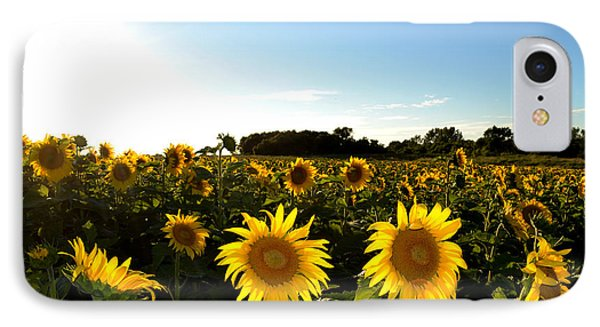 IPhone Case featuring the photograph Sunflower Field  by Lyle Crump