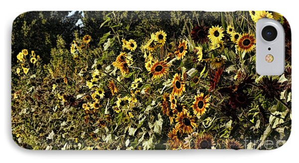 Sunflower Fields Forever Phone Case by Peggy Hughes