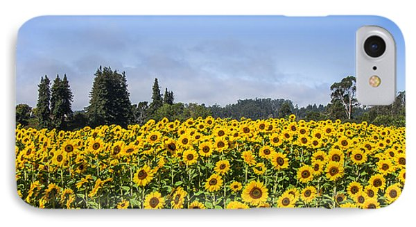 Sunflower Horizon IPhone Case