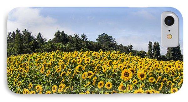 Sunflower Horizon Number 2 IPhone Case
