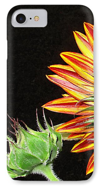 Sunflower In The Making Phone Case by Joyce Dickens