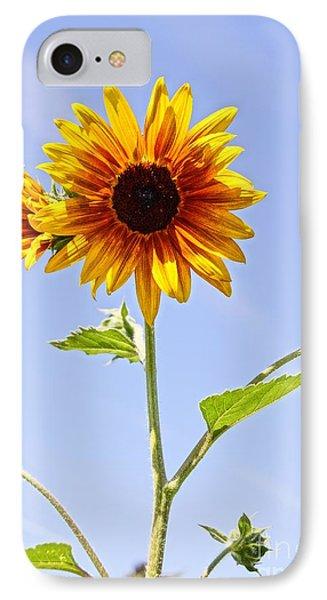 Sunflower In The Sky Phone Case by Kerri Mortenson