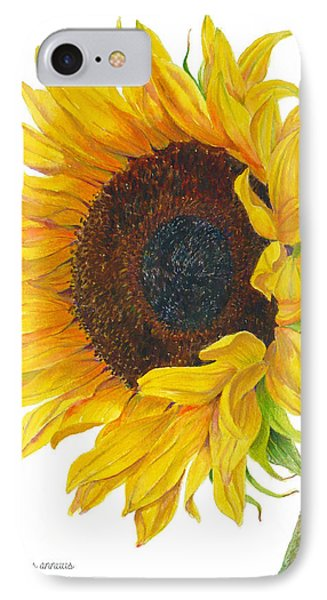 Sunflower - Helianthus Annuus IPhone Case by Janet  Zeh