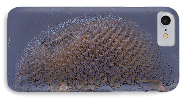 Sunflower IPhone Case by Joanne Smoley
