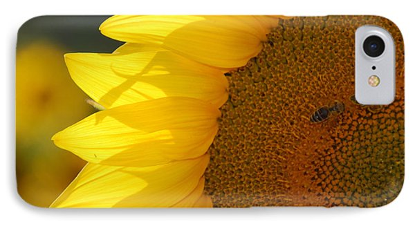 Sunflower Joy IPhone Case by Ankya Klay