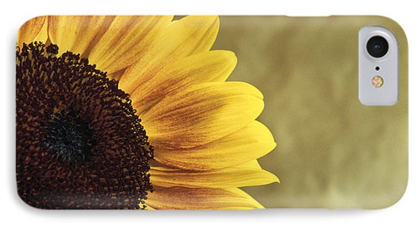 IPhone Case featuring the photograph Sunflower by Lana Enderle