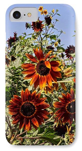 Sunflower Layers Phone Case by Kerri Mortenson
