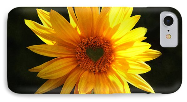 IPhone Case featuring the photograph Sunflower Love by Marjorie Imbeau