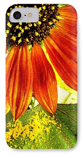 Sunflower Memories Phone Case by Kathy Bassett
