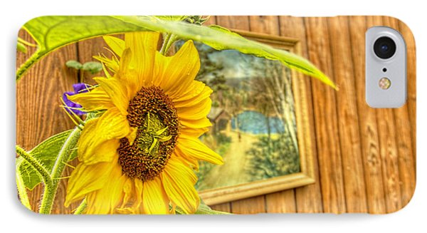 Sunflower On A Fence IPhone Case by Jim Lepard