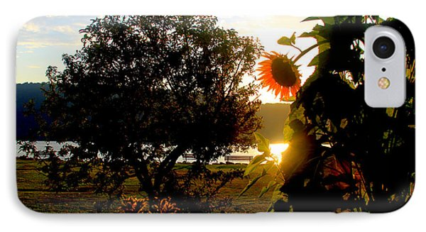 IPhone Case featuring the photograph Sunflower On The Hudson by Aurelio Zucco