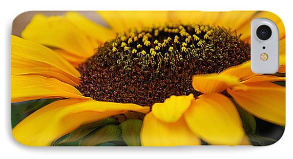 IPhone Case featuring the photograph Sunflower Portrait Two by John S