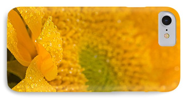 Sunflower Raindrops IPhone Case by Joan Herwig