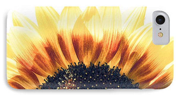 Sunflower Rising IPhone Case by Wade Brooks