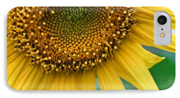 Sunflower Smiles IPhone Case by Julie Andel