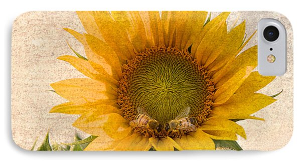 Sunflower - Sun Kiss IPhone Case by John Hamlon