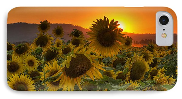 Sunflower Sun Rays IPhone Case by Mark Kiver