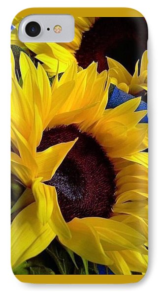 IPhone Case featuring the photograph Sunflower Sunny Yellow In New Orleans Louisiana by Michael Hoard