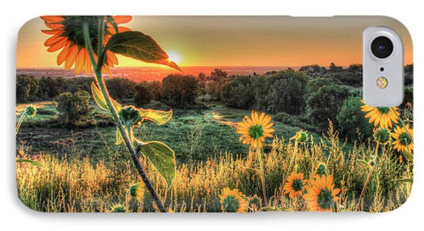 Sunflower Sunrise 1 IPhone Case