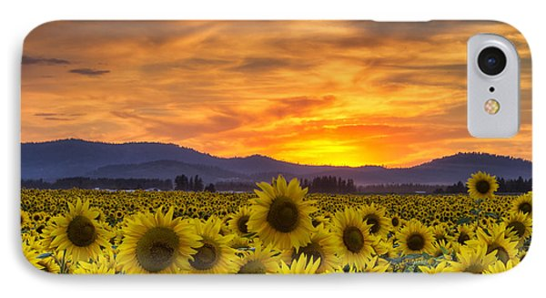 Sunflower Sunset IPhone Case
