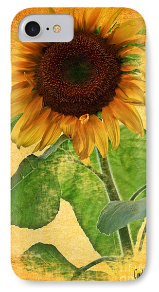 Sunny Sunflower IPhone Case by Carol F Austin