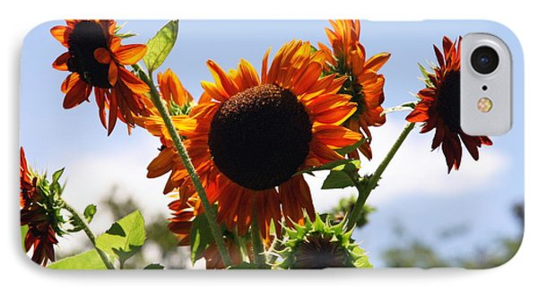 Sunflower Symphony Phone Case by Karen Wiles