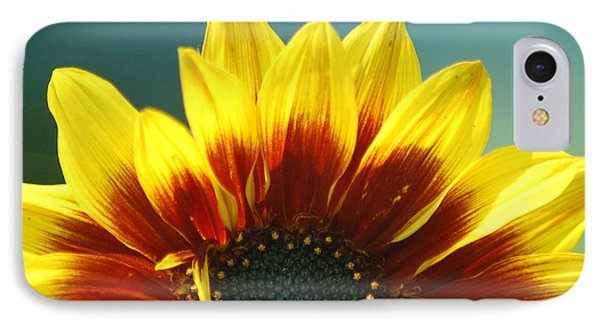 IPhone Case featuring the photograph Sunflower by Tam Ryan