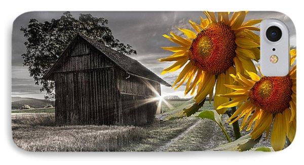Sunflower Watch IPhone Case by Debra and Dave Vanderlaan