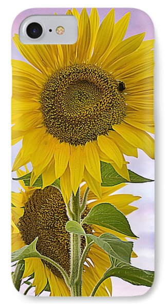 Sunflower With Colorful Evening Sky IPhone Case
