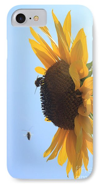 Sunflower With Visitors IPhone Case by Lotus