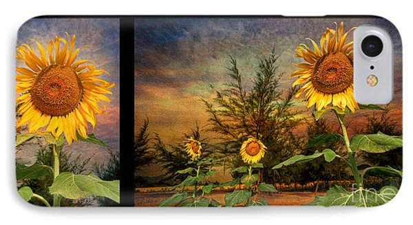 Sunflowers IPhone Case by Adrian Evans