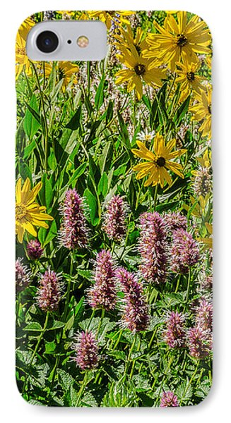 Sunflowers And Horsemint IPhone Case