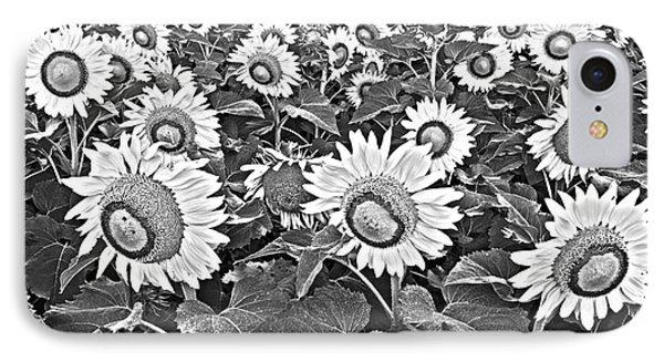 Sunflowers Phone Case by Elena Nosyreva