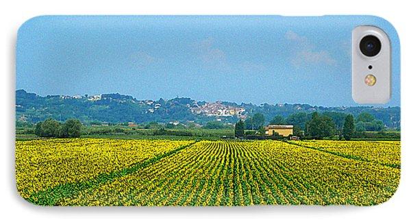 Sunflowers Field Of Tuscany Italy IPhone Case by Irina Sztukowski