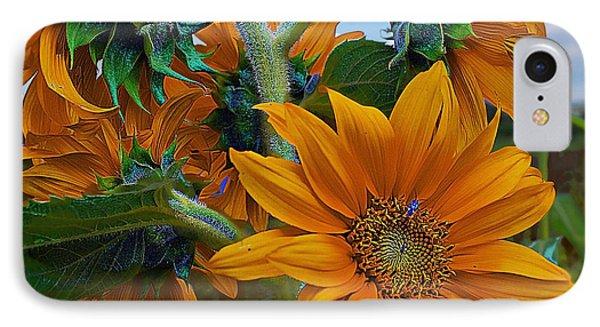 Sunflowers In A Bunch IPhone Case by John  Kolenberg